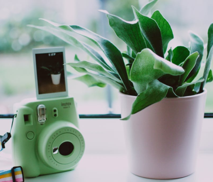 How To Photograph Your  Interiors Like A Pro